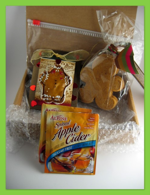 Gingerbread gift package