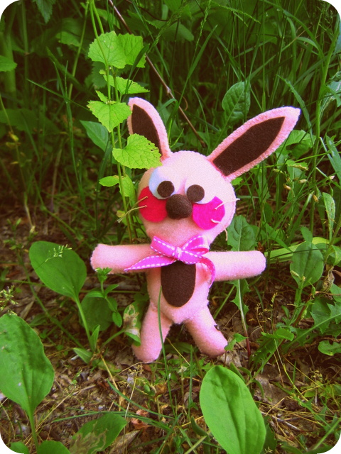 Ralphie the Bunny on the nature trail