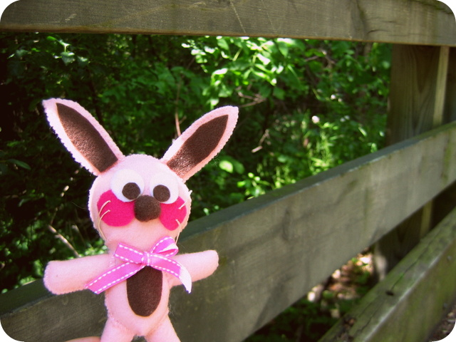 Ralphie on the bridge at the nature trail
